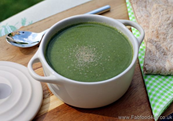 Bowl of spinach soup