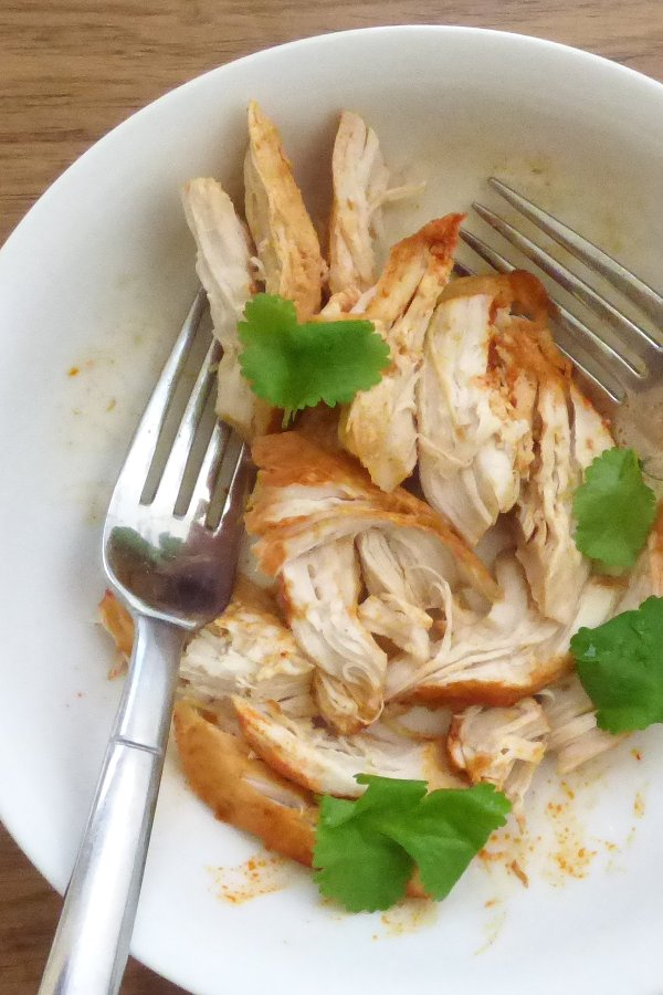 Bowl of easy shredded chicken coated in paprika, with forks for shredding and coriander/cilantro garnish