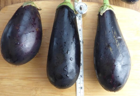 aubergine on a chopping board being measured